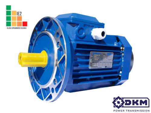 Silnik elektryczny 3 fazowy DKM YE2-100L2-4 3,0kW 1400 100B5 (28/250) IE2